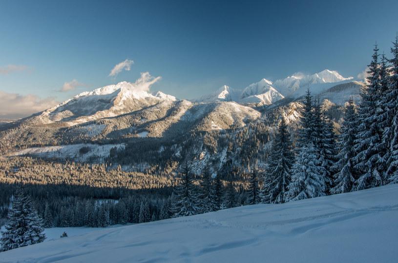 Dwerniczek jest niewątpliwie jednym z najbardziej kameralnych ośrodków narciarskich w naszym kraju /123RF/PICSEL
