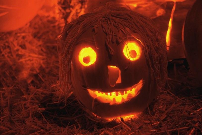 Dynie nieodłącznym atrybutem Halloween /© Glowimages