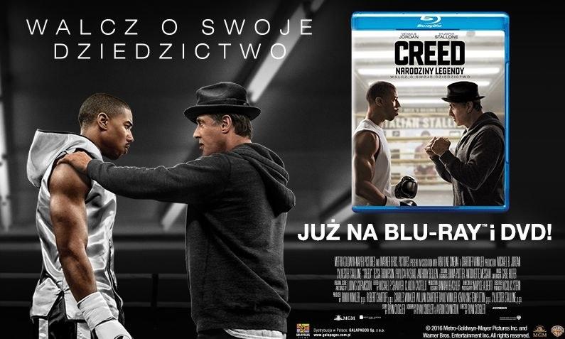 "Dystrybutorem filmu ""Creed: Narodziny legendy"" na płytach DVD i Blu-ray jest Galapagos Films /materiały dystrybutora"