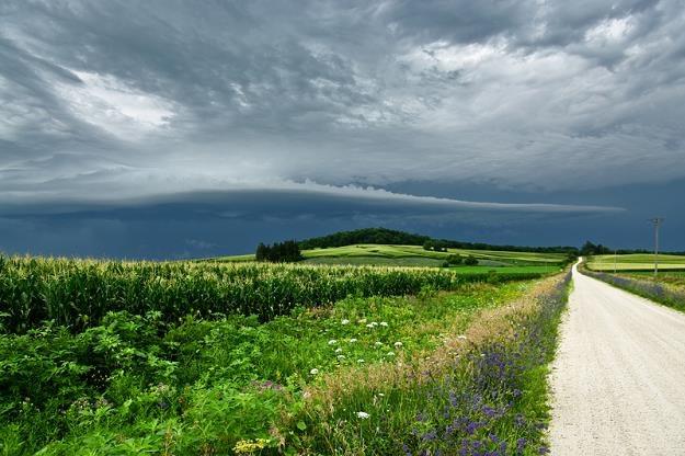 Działki o powierzchni mniejszej niż 0,3 hektara (30 arów) są wyłączone spod rygorów ustawy /© Panthermedia