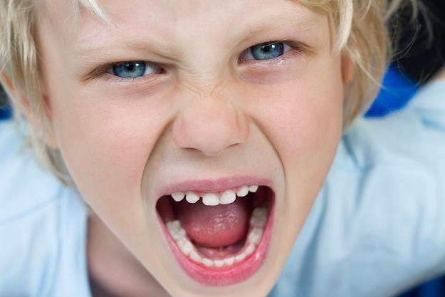 Dzieci mają coraz więcej do powiedzenia w wyborach konsumenckich /©123RF/PICSEL