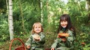 Dzieci powinny trzymać się z daleka od grzybów