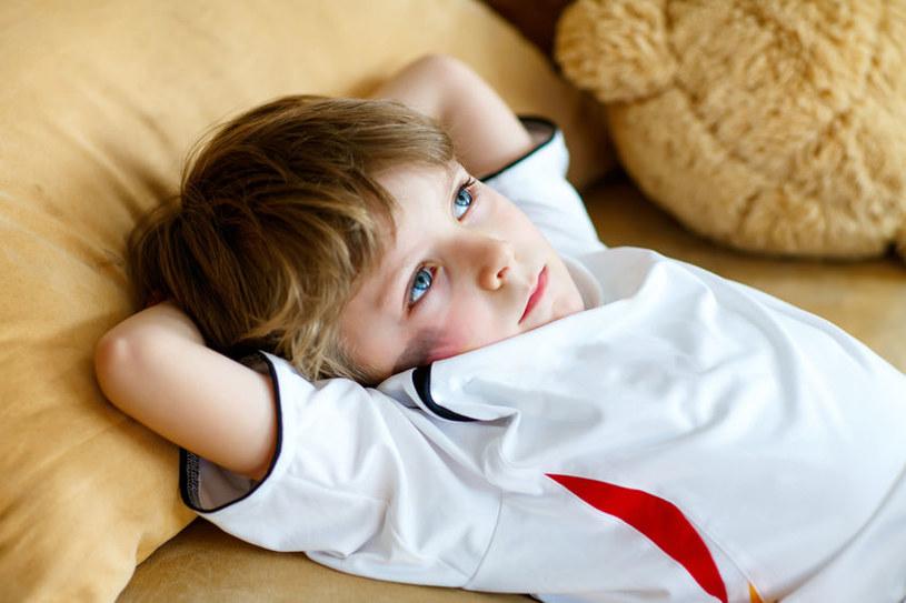 Dzieci są szczere, żądne wiedzy i mają spory temperament /123RF/PICSEL