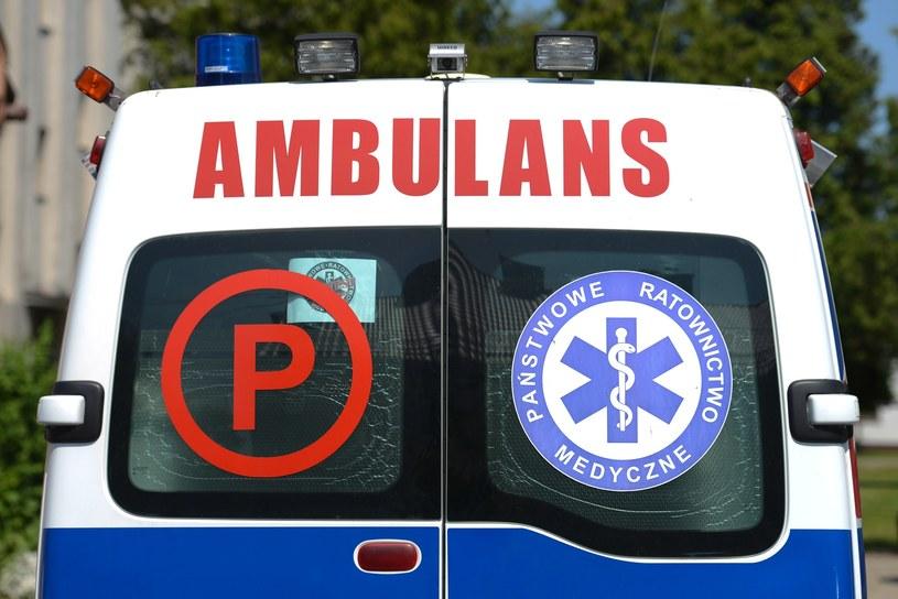 Dzieci z ranami szarpanymi przewiezione zostały do szpitala (zdjęcie ilustracyjne) /Adam Staśkiewicz /East News