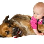 Dzieciaki kochają zwierzaki