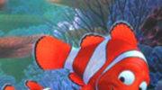 Dzieciaki lubią Nemo