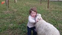 Dziecko i owieczka zostali najlepszymi przyjaciółmi. Urocze