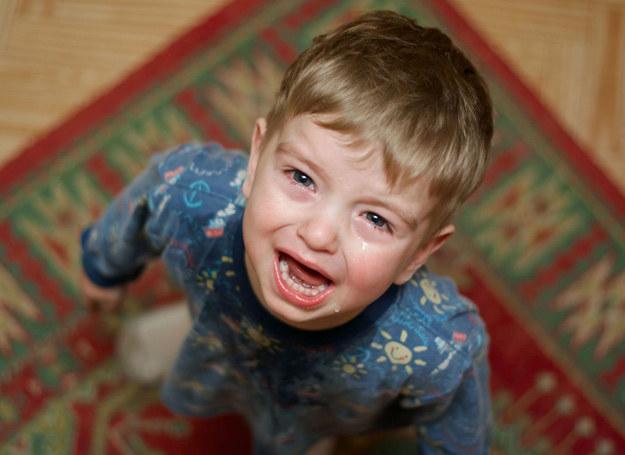 Dziecko musi wiedzieć, co mu wolno, a czego nie. /123RF/PICSEL