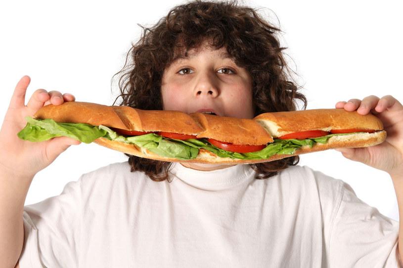 Dziecko powinno wiedzieć, jakie są konsekwencje nadwagi. Ale nie może być przez dorosłych zawstydzane /123RF/PICSEL