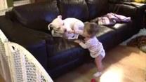 Dziecko próbuje znaleźć wspólny język z psem