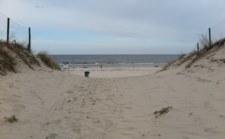 Dziecko przeszło plażą osiem kilometrów. Odnalazło się w Niemczech