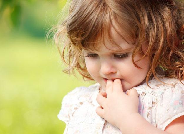 Dziecko trzeba szczególnie chronić przed kontaktem z pszczołami, osami oraz szerszeniami.