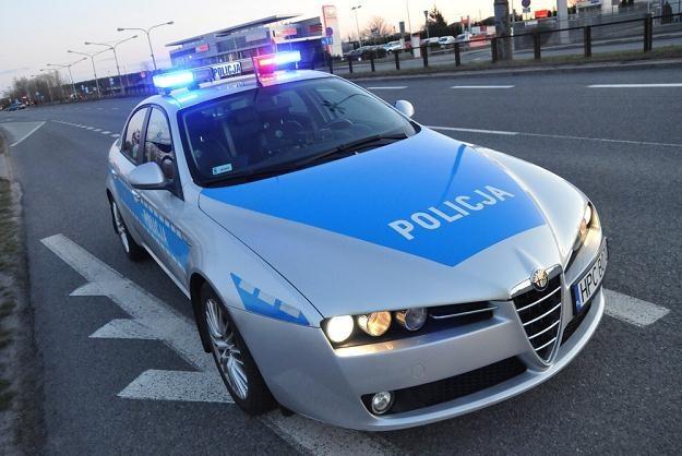 Dzięki CEPiK-owi policjanci mieli wszystko wiedzieć o kierowcy i jego samochodzie /Fot: Paweł Skraba /Reporter