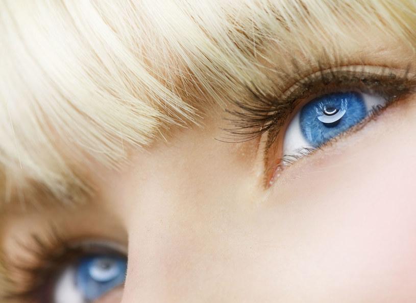 Dzięki konturowaniu będziesz przyciągać spojrzeniem! /123RF/PICSEL