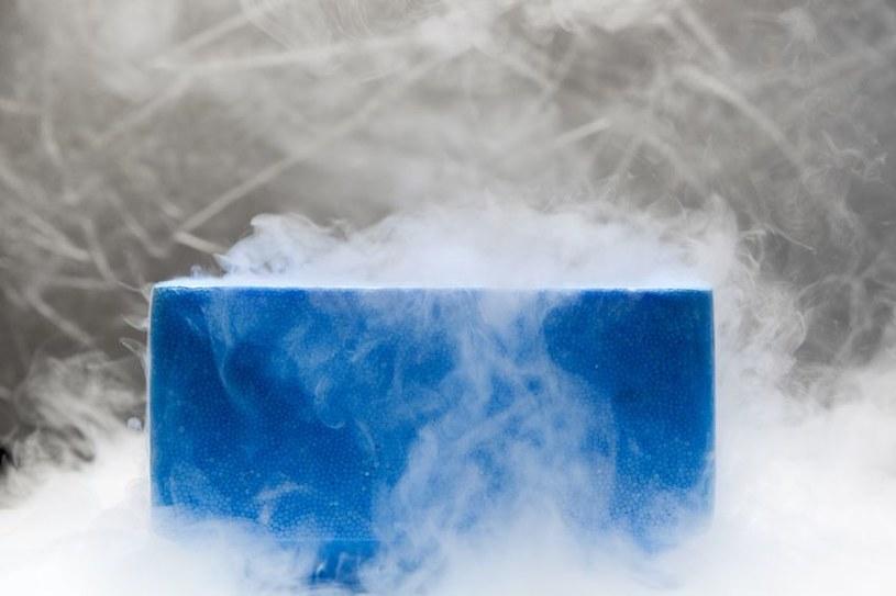 Dzięki nowej technice zamrażania tkanek dojdzie do rewolucji w transplantologii? /123RF/PICSEL