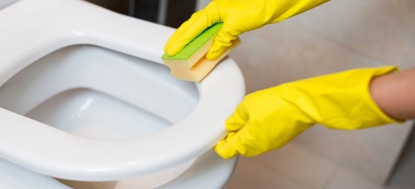 Dzięki olejkowi z cytryny toaleta będzie odkażona i czysta /123RF/PICSEL