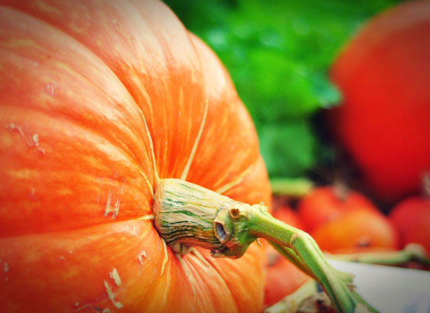 Dzięki pachnącym warzywno-owocowym zabiegom swędzenie, pieczenie oraz pierzchnięcie naskórka znikną bez śladu! /123RF/PICSEL
