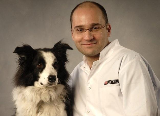 Dzięki regularnym treningom pies zachowuje lepszą kondycję i wytrzymałość /Dogandsport
