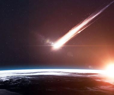 Dzięki uderzeniu komety w Ziemię powstał... człowiek