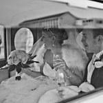Dzień ślubu Vicky i Philla - stylizacja ślubna panny młodej