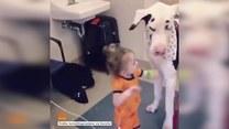 Dziewczynka i dog bawią się bańkami mydlanymi