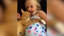 Dziewczynka śpiewa piosenkę swojej śpiącej kociej przyjaciółce