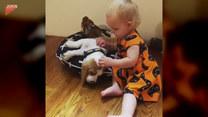 Dziewczynka zaczepia i tuli się do psa