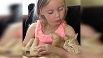 Dziewczynka zaśpiewała kołysankę... kotu. Urocze