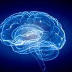 Dziewięć nawyków, które są szkodliwe dla mózgu