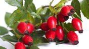 Dzikie owoce jesieni