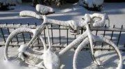 Dziś rano spadł śnieg...