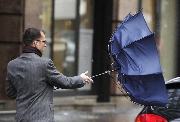 Dziś w południowej Polsce wiało bardzo mocno /AFP