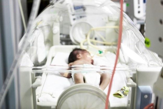 Dzisiaj inkubatory ratują życie wcześniakom, jutro mogą całkowicie zastąpić rolę kobiety /123RF/PICSEL