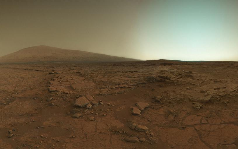 Dzisiaj powierzchnia Marsa jest sucha, ale kiedyś taka nie była /NASA