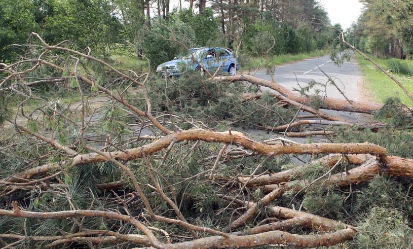 Efekt potężnej burzy w okolicach Kijowa /Volodymyr Tarasov/Zuma Press /Agencja FORUM