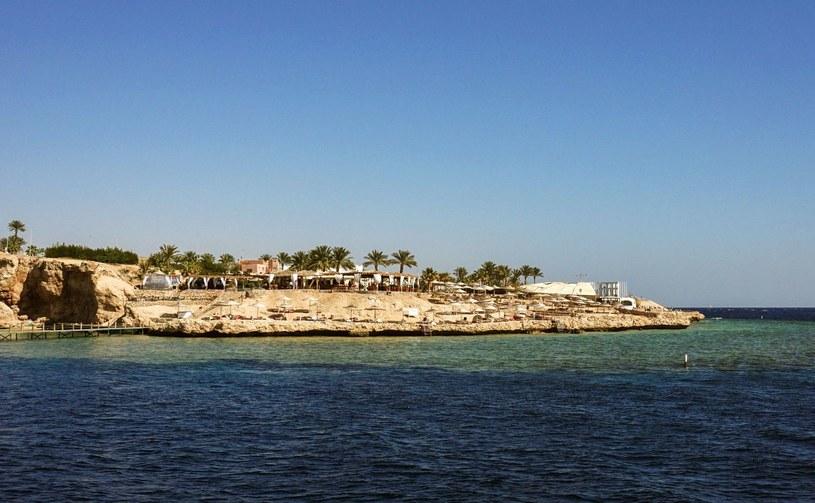 Egipskie wybrzeże Morza Czerwonego cieszy się dużą popularnością wśród turystów /MOHAMED EL-SHAHED /AFP