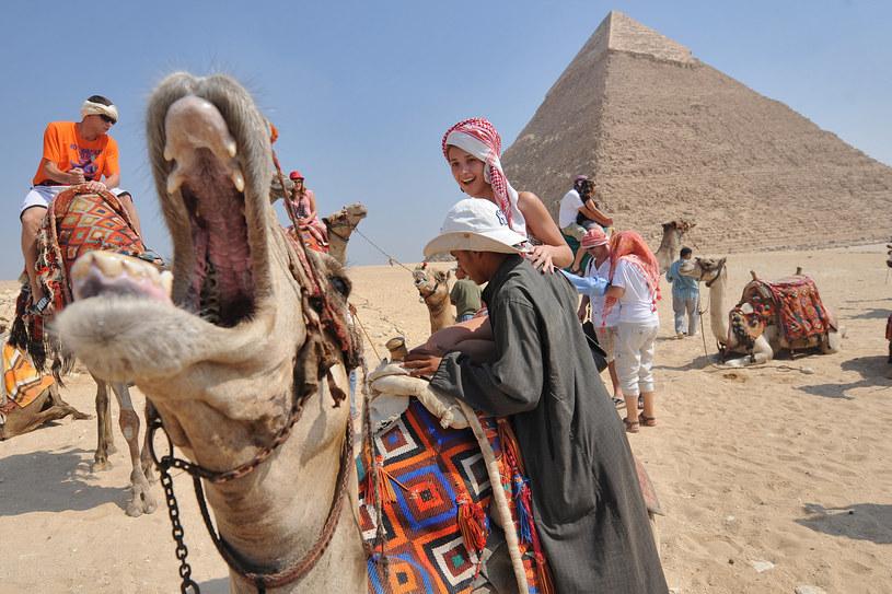 Egipt to jeden z ulubionych wakacyjnych kierunków Polaków /Bartlomiej Jurecki /Agencja FORUM