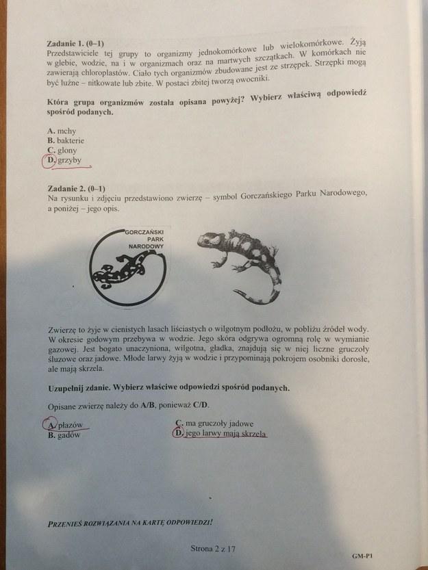 Egzamin gimnazjalny. Propozycja rozwiązań /RMF FM