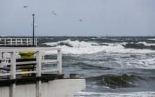 Ekolodzy alarmują: coraz mniej tlenu w wodach Bałtyku
