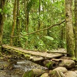 Ekolog z Brazylii został zamordowany? Jest śledztwo