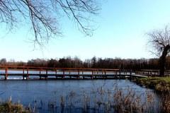Ekologiczny Park w Pasłęku