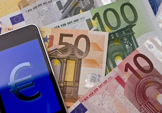 Ekonomiści: Przyjęcie przez Polskę euro zwiększyłoby nasze bezpieczeństwo /©123RF/PICSEL