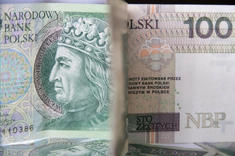 Ekonomiści wierzą w umocnienie złotego! /Wojciech Stóżyk /Reporter