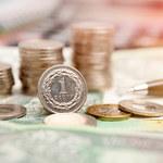 Ekonomista: Sytuacja na światowych rynkach finansowych szkodzi złotemu