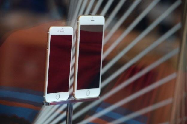Ekran OLED w nowych iPhone'ach /AFP