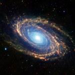 Ekspansja wszechświata pomogła przetrwać życiu na Ziemi