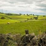 Eksperci: Inwestycje w ziemię dobrą lokatą, ale długoterminową
