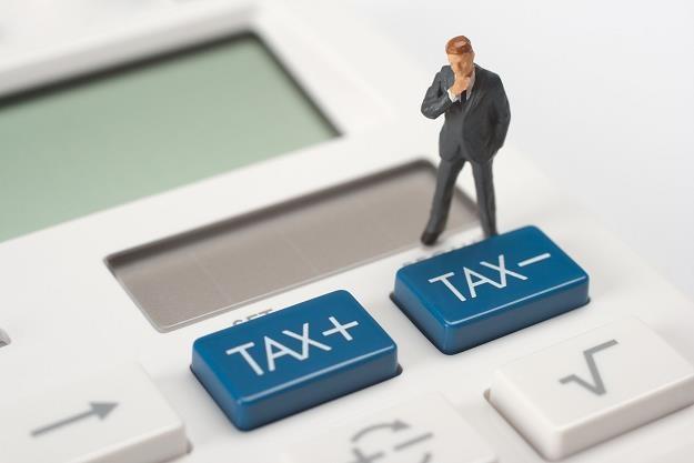 Eksperci krytykują nasz system podatkowy /PAP