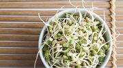 Eksperci przekonują - białko roślinne lepsze dla zdrowia