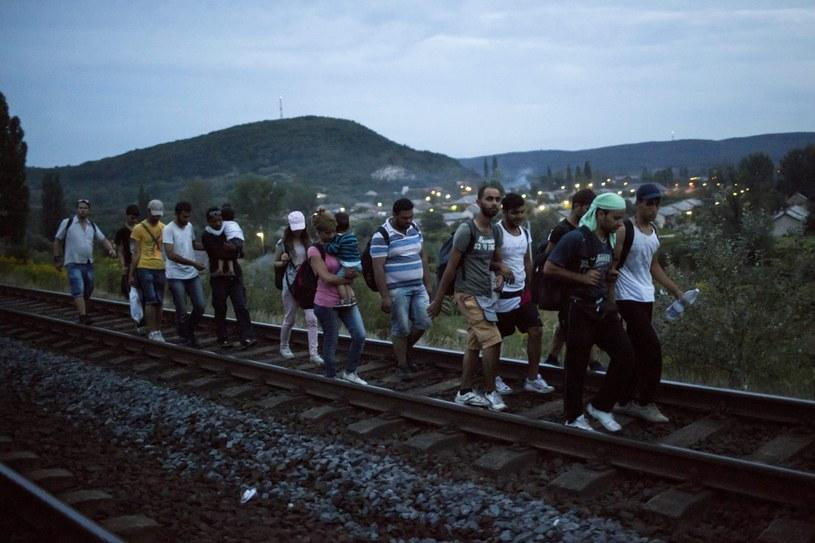 Eksperci przewidują, że na wiosnę rozpocznie się nowa fala imigracji /AFP